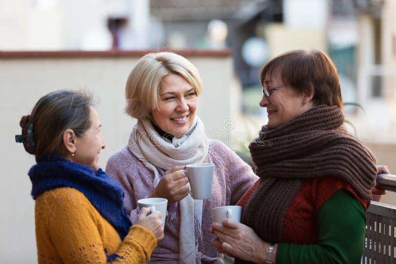 Mulheres superiores que bebem o chá no balcão fotografia de stock royalty free