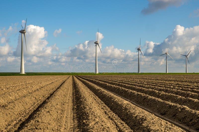 Mulini di vento immagini stock