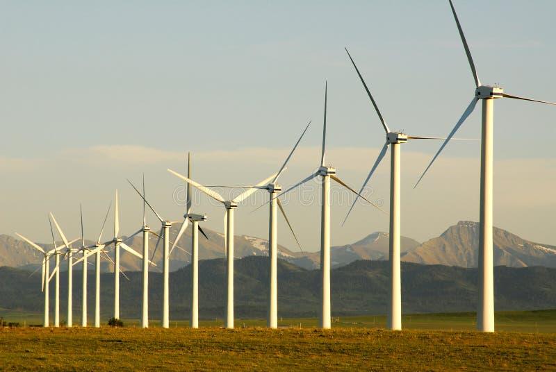 Mulini a vento immagine stock