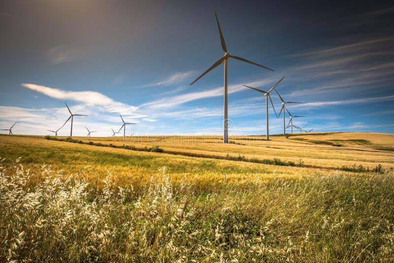 Mulini a vento per produzione di Electric Power fotografia stock