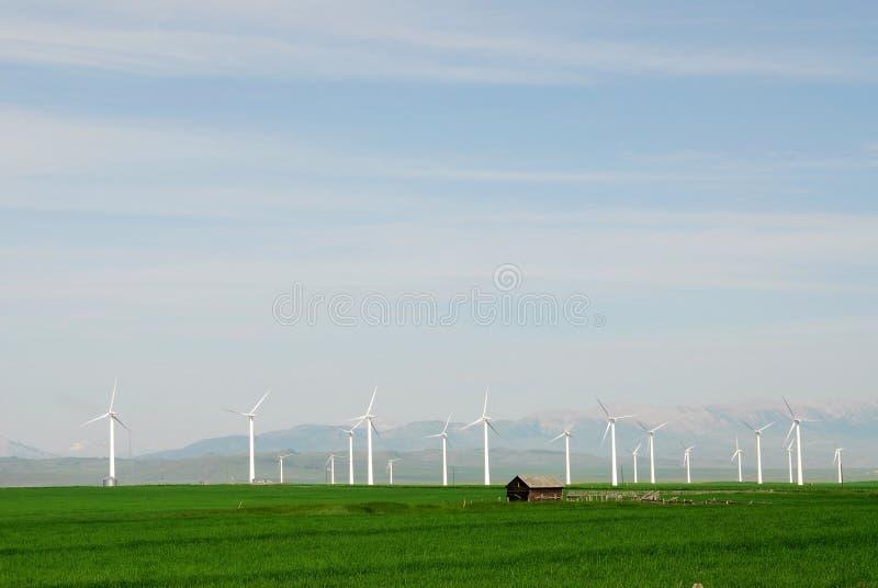 Mulini a vento sulla pianura fotografie stock