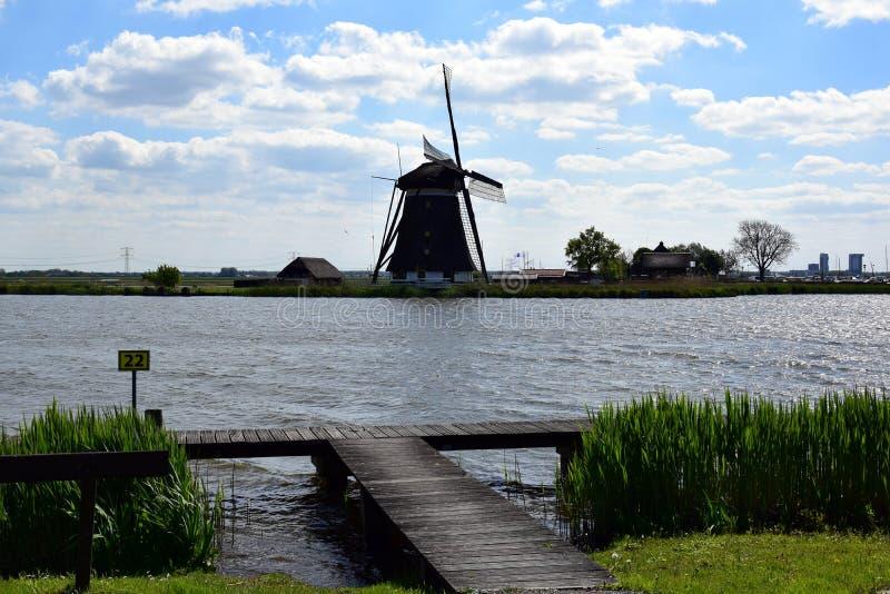 Mulino olandese tipico sulla riva del lago fotografie stock libere da diritti