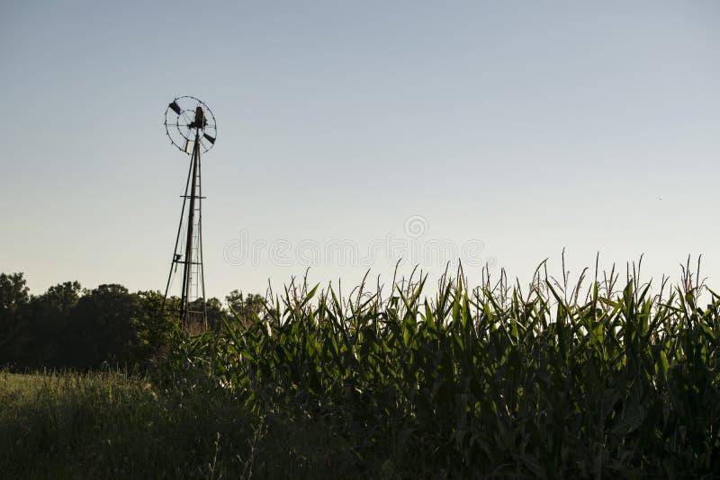 Mulino a vento antico alto nel campo di cereale fotografie stock libere da diritti