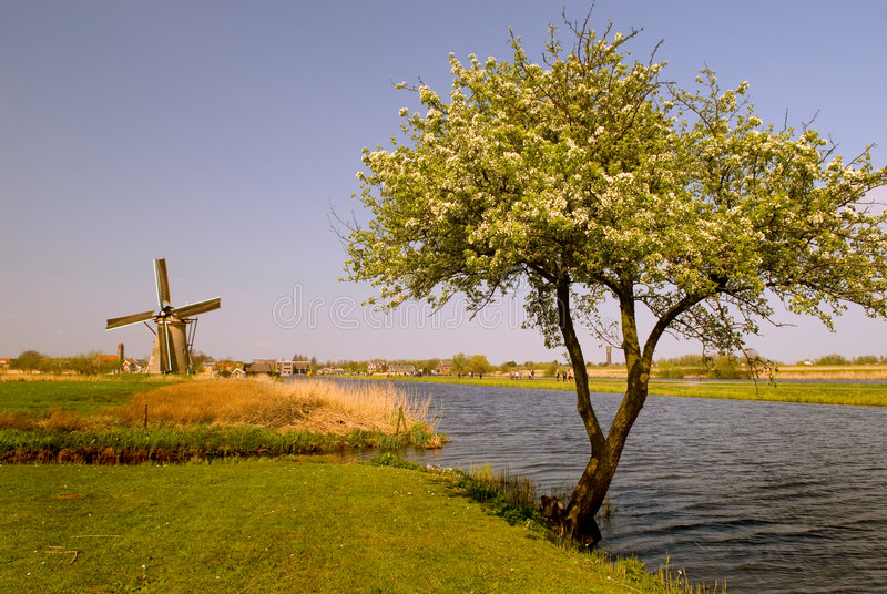 Mulino a vento di Kinderdijk fotografie stock libere da diritti