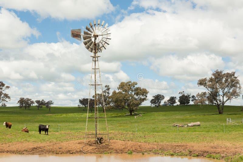 Mulino a vento e pascolo australiani dell'azienda agricola fotografia stock