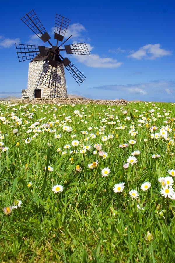 Mulino a vento II immagine stock libera da diritti