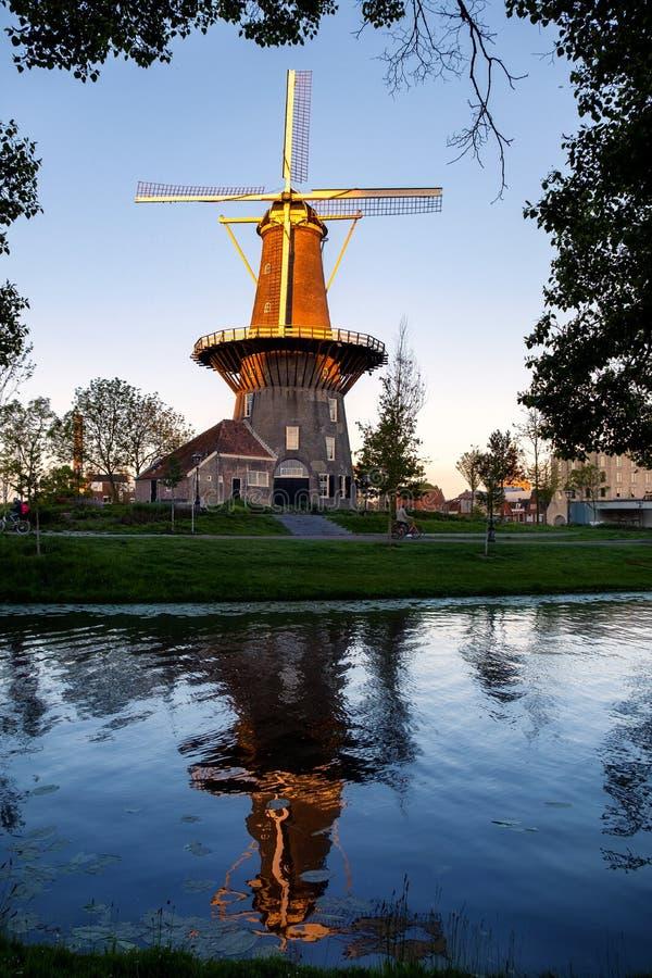 Mulino a vento, Leida, Olanda fotografia stock libera da diritti