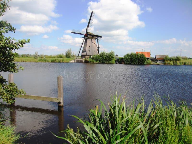 Mulino a vento nel paesaggio olandese fotografia stock libera da diritti