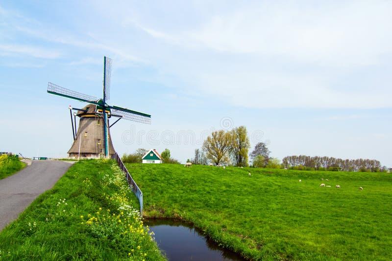 Mulino a vento olandese. I Paesi Bassi fotografia stock