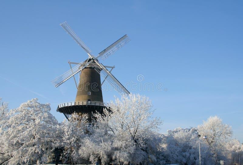 Mulino a vento olandese in inverno fotografia stock