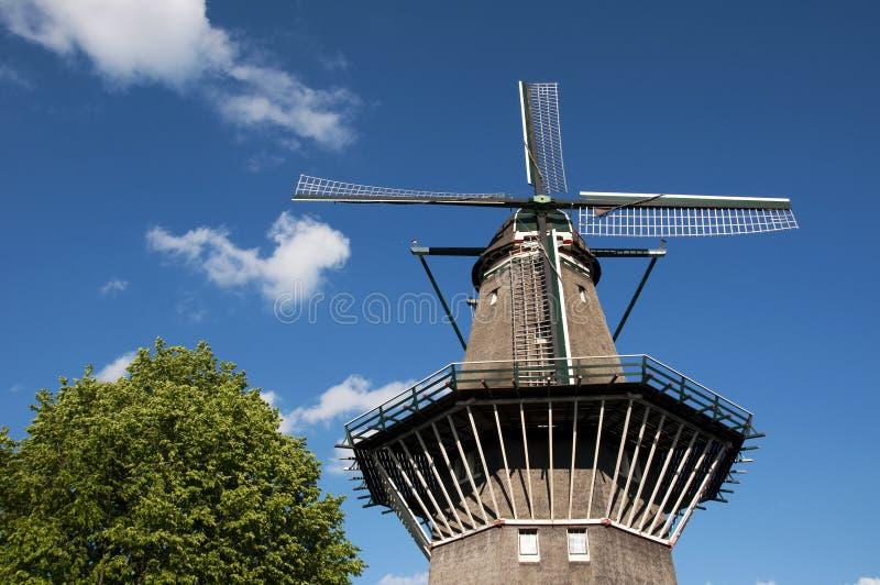 Mulino a vento olandese - particolare fotografia stock libera da diritti