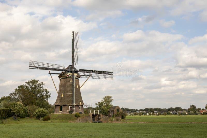 Mulino a vento olandese tradizionale nella campagna nei Paesi Bassi circondati dal pascolo sotto un cielo nuvoloso fotografia stock