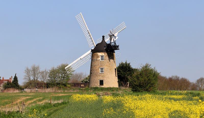 Mulino a vento in un paesaggio rurale inglese di n fotografia stock libera da diritti