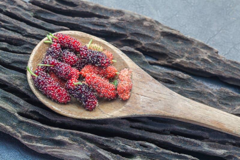 Mullbärsträdfrukt på träskeden royaltyfri fotografi