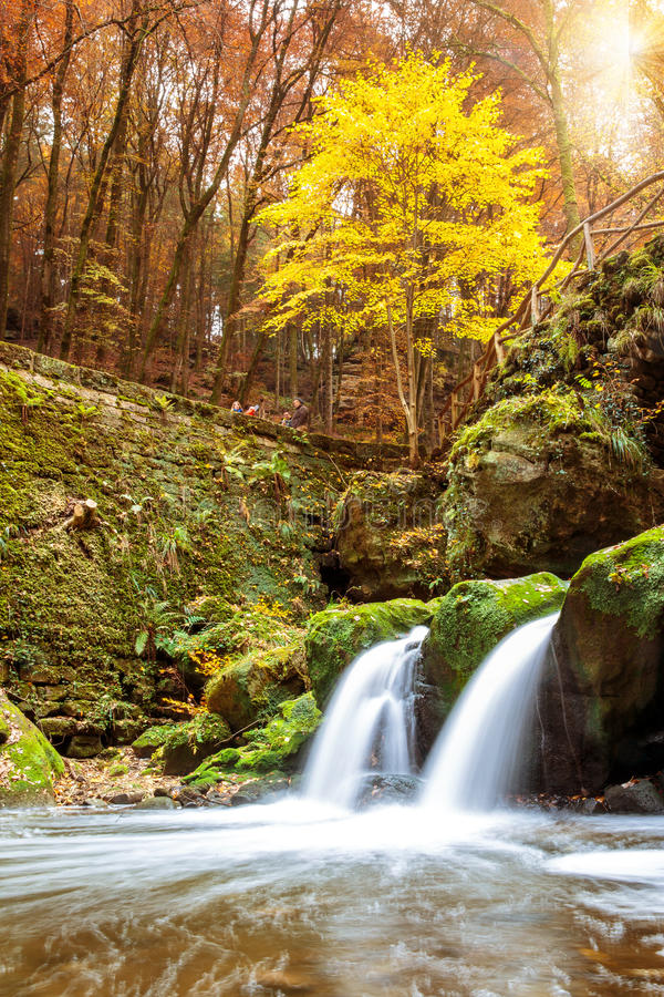 Free Mullerthal Luxembourg Royalty Free Stock Photo - 61679875