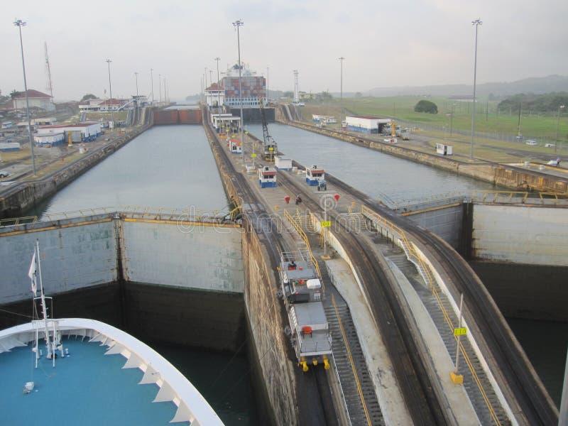 Mulor för Panama kanal fotografering för bildbyråer