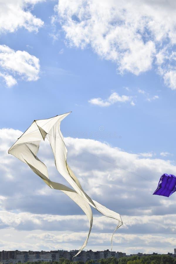 multi покрашенные змеи в голубом небе стоковое изображение rf