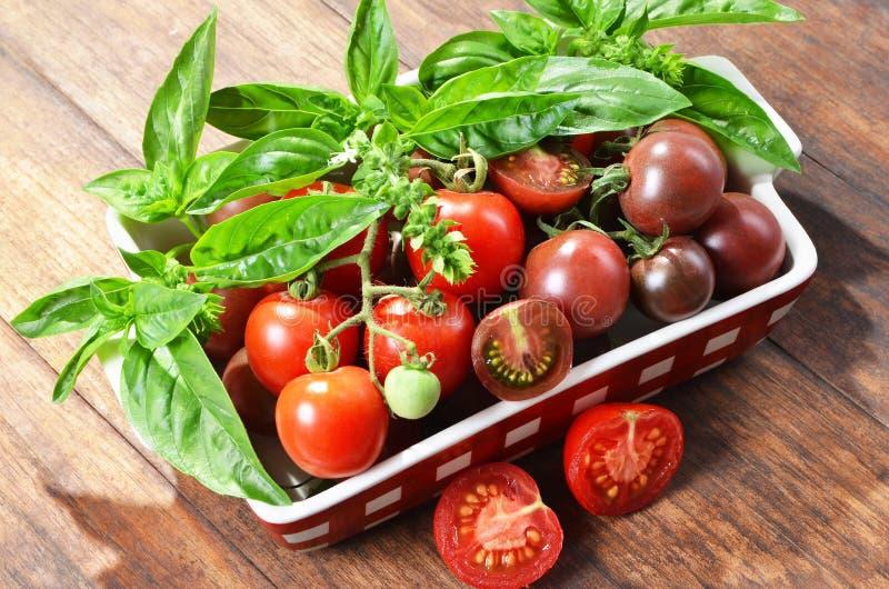 Multi покрашенные томаты вишни, базилик, выбрали от органического сада стоковые фотографии rf