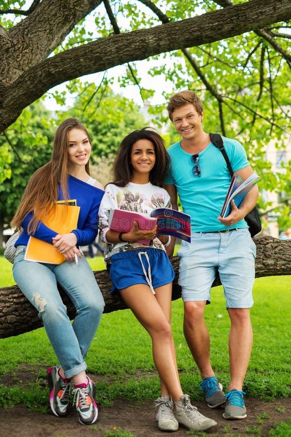 Multi этнические студенты в парке стоковая фотография rf
