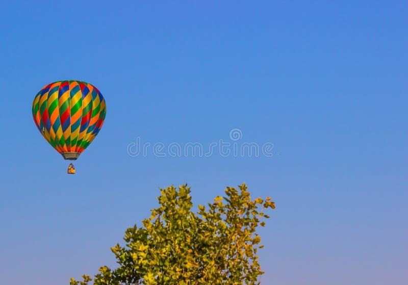 Multi balão de ar quente colorido acima da linha de árvore fotografia de stock royalty free