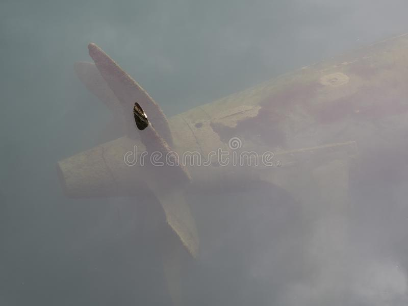 Multi blade portpropeller of an old war submarine royalty free stock photos