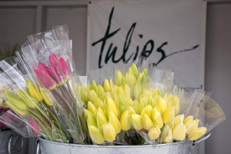 Multi-colored bouquets of fresh spring tulips in a metal tub. Metal tub full of plastic wrapped bouquets of pink and yellow spring tulips. in the background is a stock images