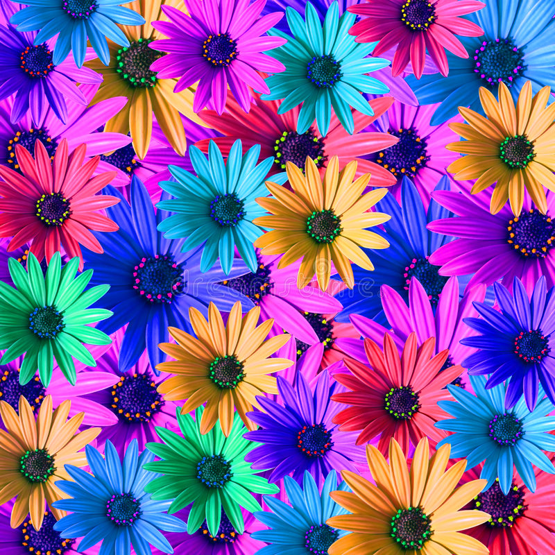 Color Daisies: Multi Colored Daisy Flowers Stock Illustration