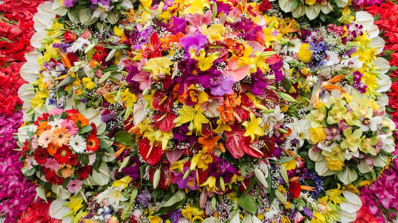 Background of multi-colored bunch of flowers stock photography