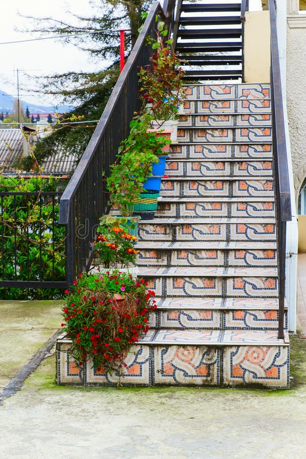 flowers in pots placed on tiles ladder in the street stock photo