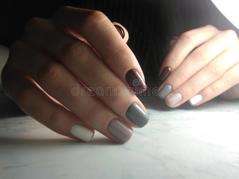 Multi-colored gel Polish with pastel shades on short square nails. Milk and coffee colors on the coating royalty free stock photography