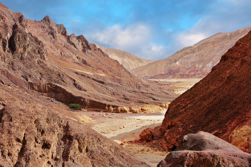 Multi-colored mountains of Eilat. Israel. Warm day in January. The road to the Pillars of Amram stock photo