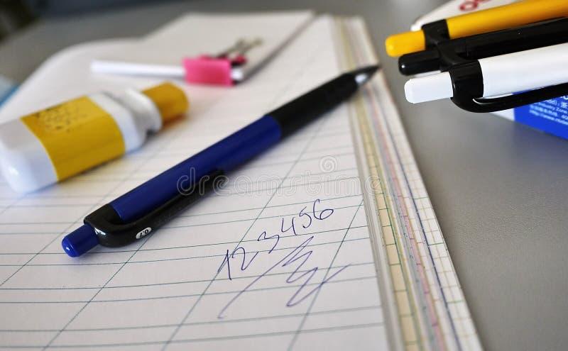 Multi-colored pennen die prachtig op de schrijftafel worden gelegd stock fotografie