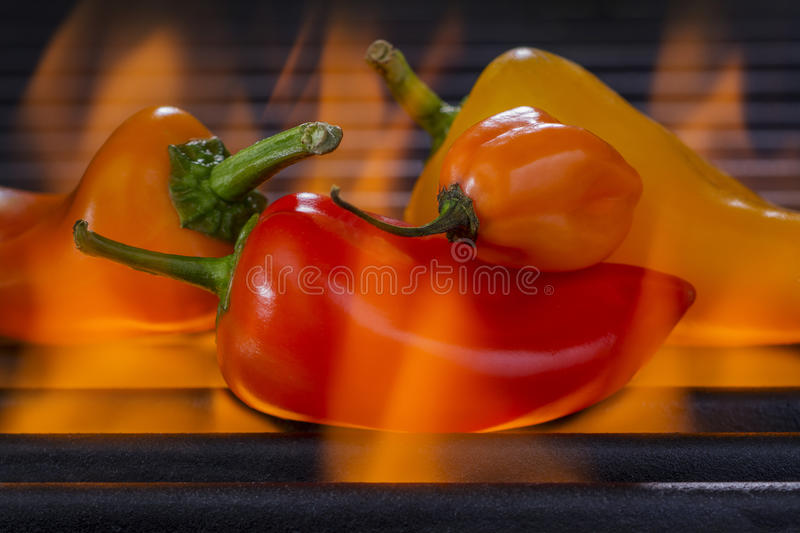 Multi colored Peppers on a Hot Flaming Barbecue Grill. Multi colored chili peppers roasting on a Hot Flaming Barbecue Grill royalty free stock photos
