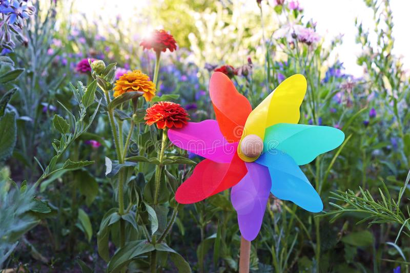 Multi colored pinwheel toy in a wildflower meadow royalty free stock image