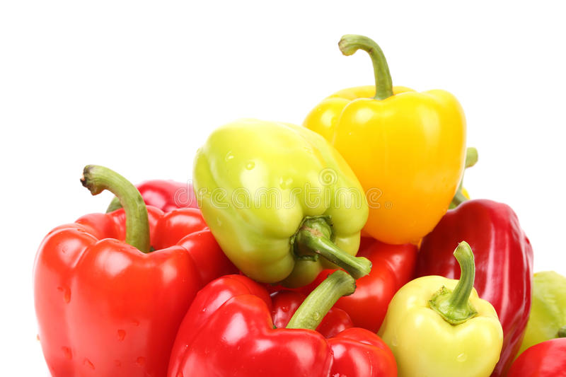 Multi-colour peppers. Isolated on a white background royalty free stock image