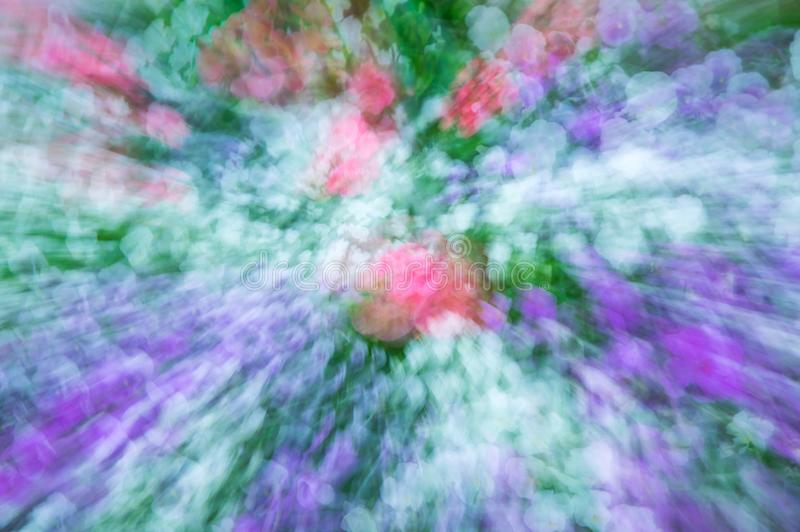 Multi-coloured background. Of blurred field flowers royalty free stock images