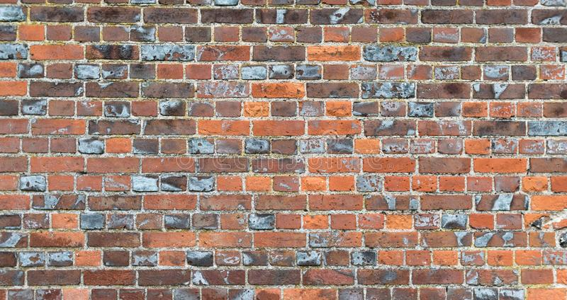 Multi coloured brick wall showing signs of age. With detail stock photo