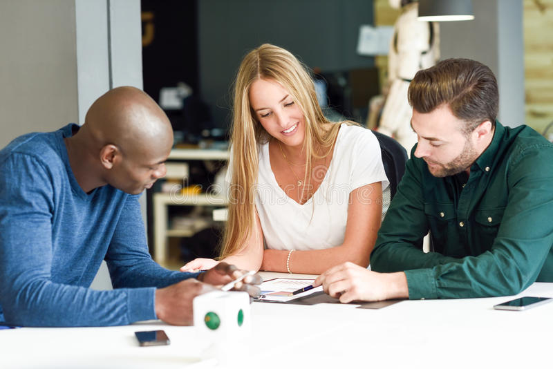 Multi-ethnic group of three young people studying together royalty free stock photography