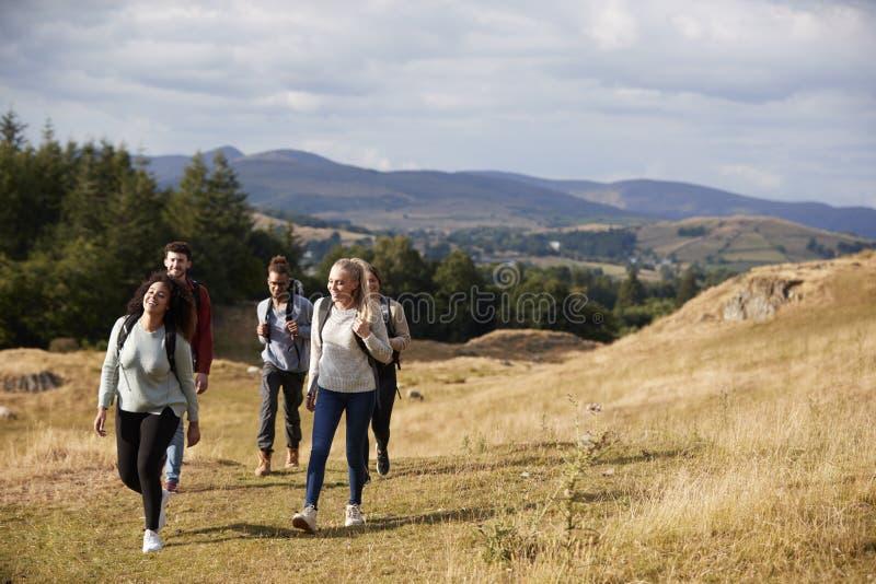 Multi etnische groep van vijf gelukkige jonge volwassen vrienden die op een landelijke weg tijdens een bergstijging lopen stock foto's