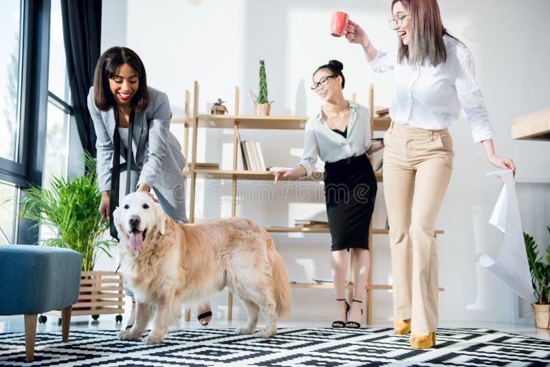Multi-etnische onderneemsters die rond met hond op kantoor voor de gek houden stock afbeelding