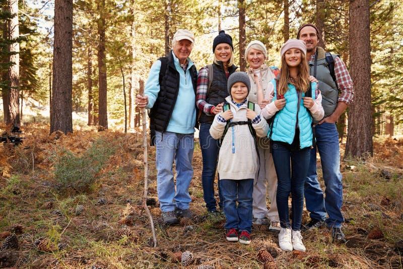 Multi família na caminhada da floresta, retrato completo da geração do comprimento fotografia de stock royalty free