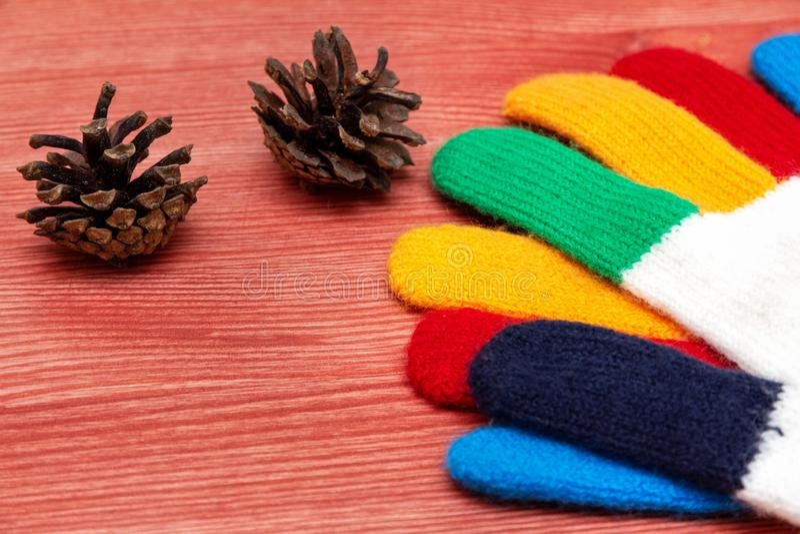 Multi farbige Handschuhe und Kiefernkegel stockfotos