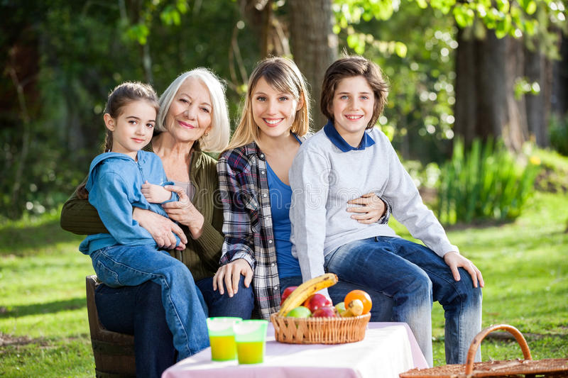 Multi Generation Family Enjoying Picnic At Park royalty free stock image