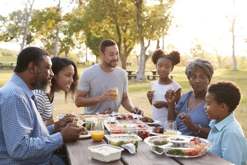 Multi Generation Family Enjoying Picnic In Park Together royalty free stock image