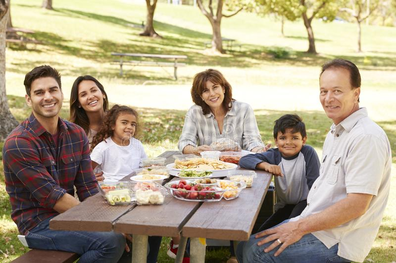 Multi generation family at picnic in a park, portrait royalty free stock photo