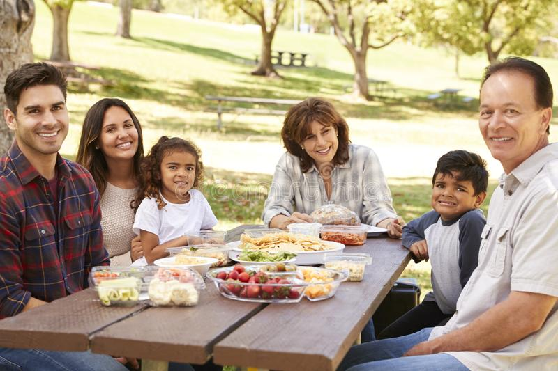 Multi generation family picnicking in park smile to camera stock photos