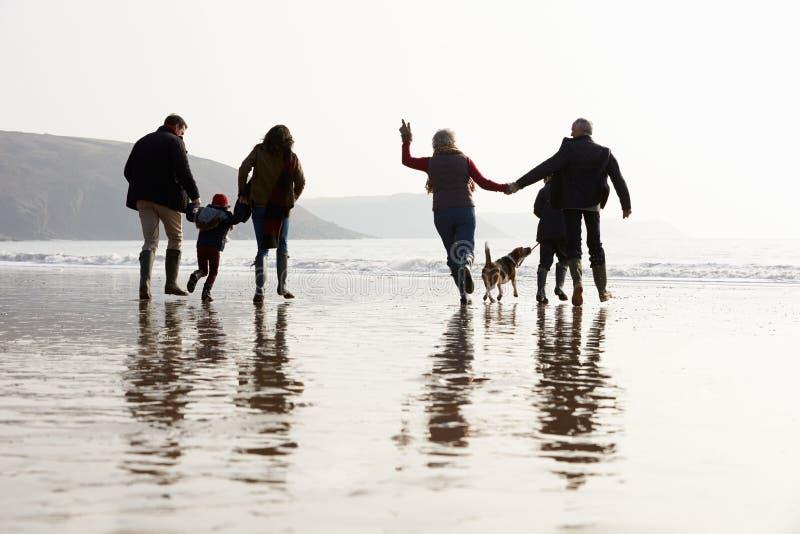 Multi Generations-Familie, die auf Winter-Strand mit Hund geht lizenzfreies stockfoto
