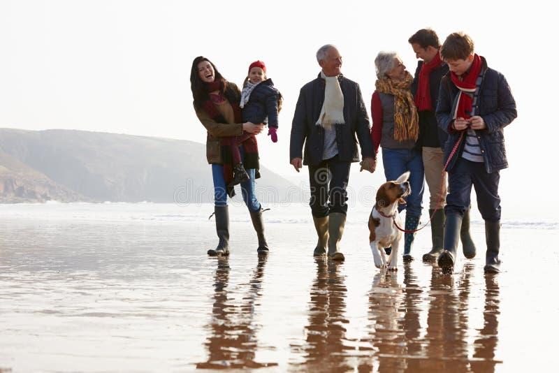 Multi Generations-Familie, die auf Winter-Strand mit Hund geht lizenzfreies stockbild