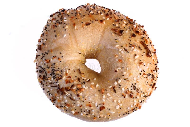 Multi-grain bagel stock photo
