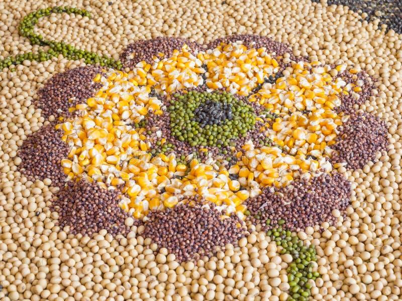Multi-grano, maíz, habas imagenes de archivo
